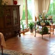 grand séjour salon avec terrasse