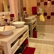 achat appartement salle de douches