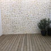 patio intèrieur à ciel ouvert